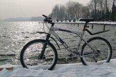 Lawinka w zimowej sceneri