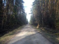 Las Suchedniowski