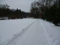 Gołuchów - opuszczam park