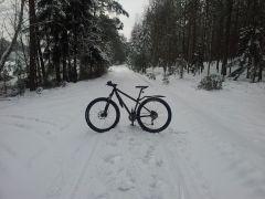 Stalowy Smok na śniegu