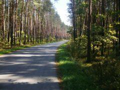 Las w Urlach