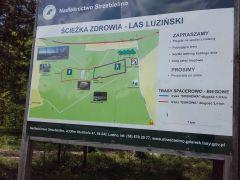 22.05 - Mapa szlaków lasu w Luzinie