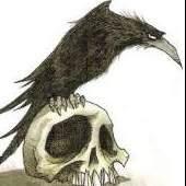 raven82